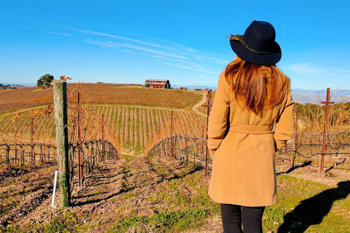 Paso Robles Travel Guide: Where to Eat, Drink, Sleep and Have Fun