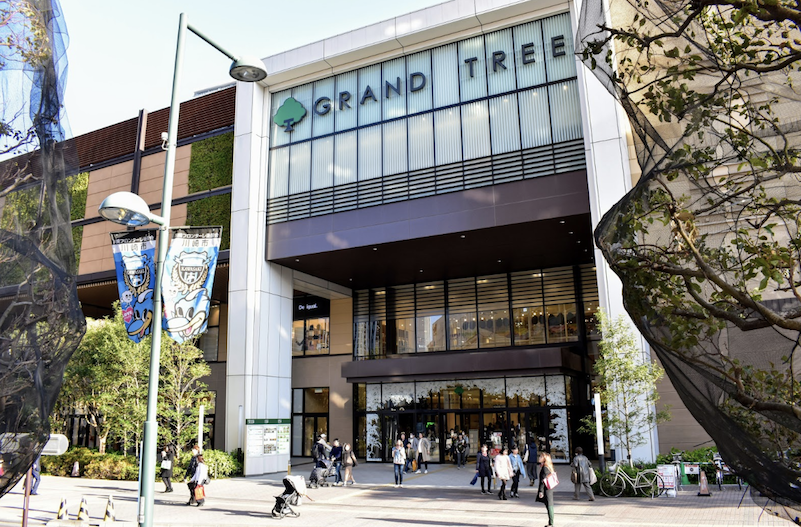 Why I Fell in Love With GRAND TREE Shopping Mall