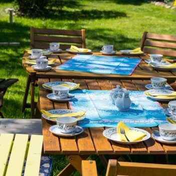 Tips for Organizing a Family Reunion